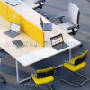 Modern Office Furniture Office Partition Meeting Table Office Desk (SZ-WSE07)