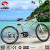 Powerful MTB E-Bike Entry Level Mountain Scooter for Adult