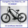 Fat Electric Mountain Bikes with Electric Crank Assist