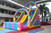 Circus Clown Castle Theme Inflatable Dry Slide for Amusement Park