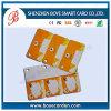 Custom Non-Standard Shape PVC Printed Tag with Hole