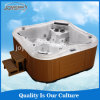 Jet Whirlpool Bathtub with TV Hot Tub Outdoor Massage SPA Used for 6 Persons with SAA, RoHS Cetification