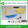 MPO to Sc Fiber Optical Patch Cord