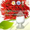 Pure Capsicum Extract /95% 98%Capsaicine