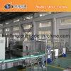 Full Automatic Aluminium Can Warming Machine (YWG Series)