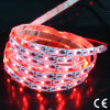 5050 White/RGB Flexible LED Strip
