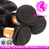 Virgin Remy Hair Silky Straight Hair Weave with Factory Price