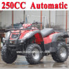 New 250cc ATV Automatic Street Legal ATV (MC-356)