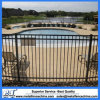 Powder Coated Professional Flat Top Wrought Iron Fence