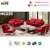 Simple Design Modern Furniture 1+1+2+3 Sofa Set (HC233)