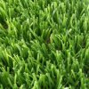 European Market Artificial Grass Artificial Lawn Artifical Turf