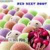 Manufacturer Supplier Red Beet Powder for Sale Beetroot Powder