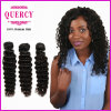 Wholesale Cheap Deep Wave Human Hair Bundles Unprocessed Virgin Malaysian Hair (DW-023)