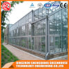 Agriculture Multi-Span Garden Toughened Glass Greenhouse