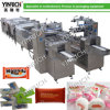 Automatic Feeding and Pillow-Type Packing Machine (DXD1000-1, 1000-2)