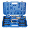 16 PCS Blind Hole Bearing Puller Extractor Set Slide Hammer