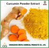 Curcumin Powder Extract