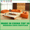 Bright Color Living Room Sectional Divaani Leather Sofa