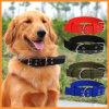 Pet Dog Metal Army Green Nylon Belt Strap Adjustable Collar