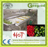 High Quality Hot Pepper Washing Machine