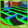 Sky High Indoor Jumping Park Trampoline for Teenager