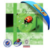 High Quality Lenticular 3D Cartoon Animal Pictures