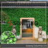 Sunwing Nature Artificial Boxwood IVY Leaf Bushes