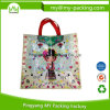Newest Design Custom Printed Eco BOPP PP Woven Bag