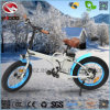 Electric Fat Tire Folding Bike