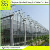 High Cost of Agricultural Plastic Greenhouse Made in China