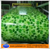 PPGI Pattern Flower Desine Color Coated Steel Coil