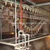 Full Set Chicken Slaughtering Machine