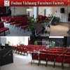 Luxurious Auditorium Chair for Church (YC-G17-08)