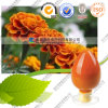 Manufacturer Feverfew Extract Lutein 10% Lutein Price