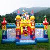 Fun Cartoon Inflatable City (AQ1309)