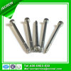 SUS304 Round Head Self Tapping Stainless Steel Special Screw