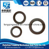 NBR Rubbertc Oil Seal with Spring Framework Oil Seal