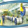 Steel Coil Manufacturer (PPGI, PPGL)