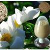 GMP Paeonia Lactiflora Pall Extract OEM
