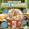 Dunecraft Grow Your Own Oyster Mushroom