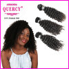 Wholesale Kinky Curly Malaysian Braiding Human Hair