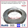 Ni-Cr Ni20cr80 2*10mm Resistance Alloy Ribbon for Heating Sealer