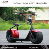 2016 Hot Selling Newest City Coco 2000 Watt Electric Scooter with Ce Certificate