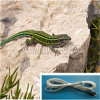 Resistance Heating Wire for Reptile Heating /Pet Antifreezing Wire