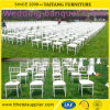 High Quality Metal Chiavari Tiffany Chair for Wedding