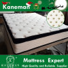 Thailand Natural Latex Pillow Top Bonnell Spring Mattress Vacuum Compress in a Pallet