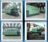 Dzl Boiler 6t Biomass Fired Boiler Wood Pellet Boiler