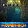 Huminrich Based Market Price High Active 17% Content Seaweed Fertilizer