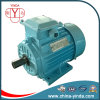 Y2 Three-Phase Motor: IEC Tru-Metric - Tefc (IP55) - Cast Iron Frame