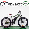 26′ Fat Tire Big Power 500W Electric Bike